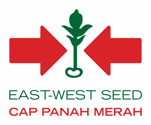 East West Indonesia